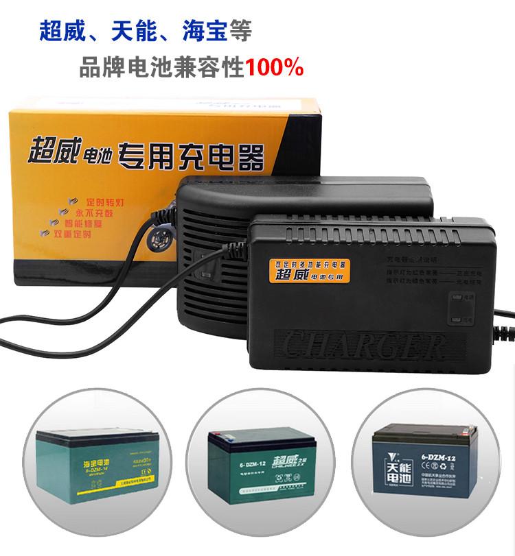 Зарядные устройства на свинцово-кислотные гелевые аккумуляторы 24 v, 48 v, 60 v, 72 v, 96v.