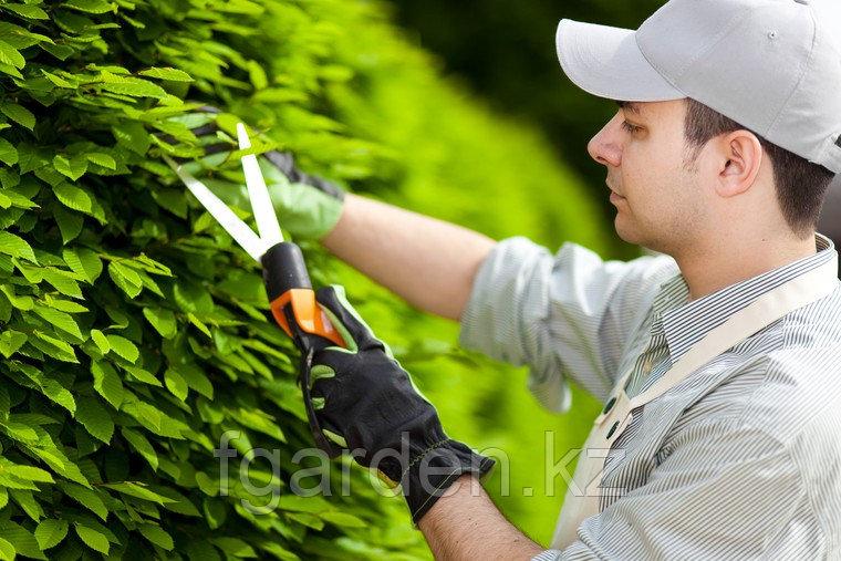 Вызов садовника