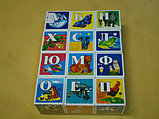 Кубики 12 элементов, Азбука в картинках, Стеллар, фото 2