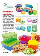 Набор контейнеров с охлаждающим элементом  (4 шт.)