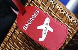 Багаж багажу рознь: самые необычные вещи, изъятые при досмотре