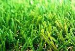 Трава искусственная ландшафтная,«Венера»зеленая