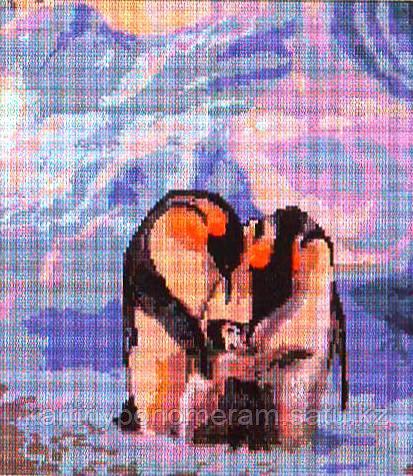 Картина стразами без подрамника D4200 41x46см
