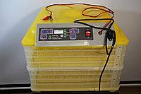 Инкубатор двух ярусный Комфорт 96 яиц. Полный автомат
