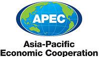 Контейнерные перевозки АТЭС в Казахстан