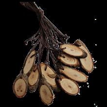 Кедровый срез, высота 3-5 см