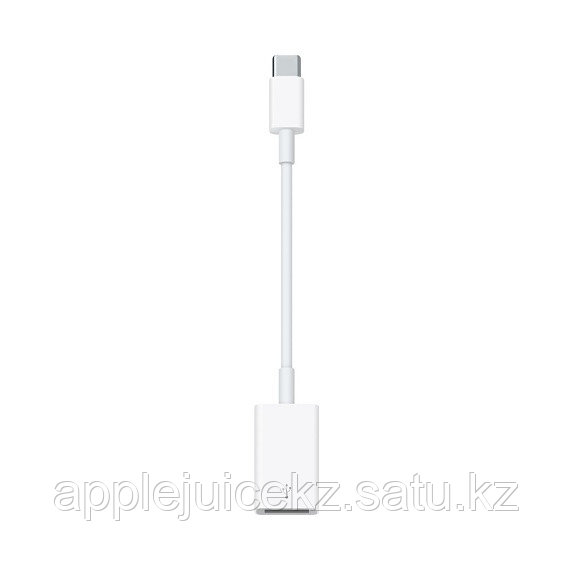 Переходник Apple Apple USB-C to USB