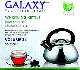 Чайник со свистком GALAXY, 3 литра, фото 2