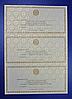 Декорированная бумага для струйных принтеров