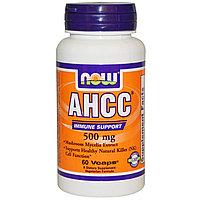 AHCC, (Активный Гемицеллюлозный Компонент)Поддержание иммунитета, 500 мг, 60 вегетарианских капсул. Now Foods