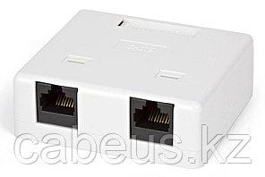 Hyperline SB2-2-8P8C-C6-WH Розетка компьютерная RJ-45(8P8C), категория 6, двойная, внешняя, Dual IDC
