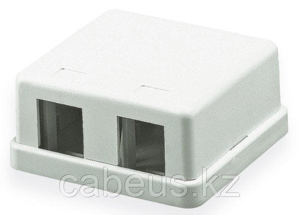 Hyperline SBB1-2-WH Корпус настенной розетки для установки 2-х вставок типа Keystone Jack, белый
