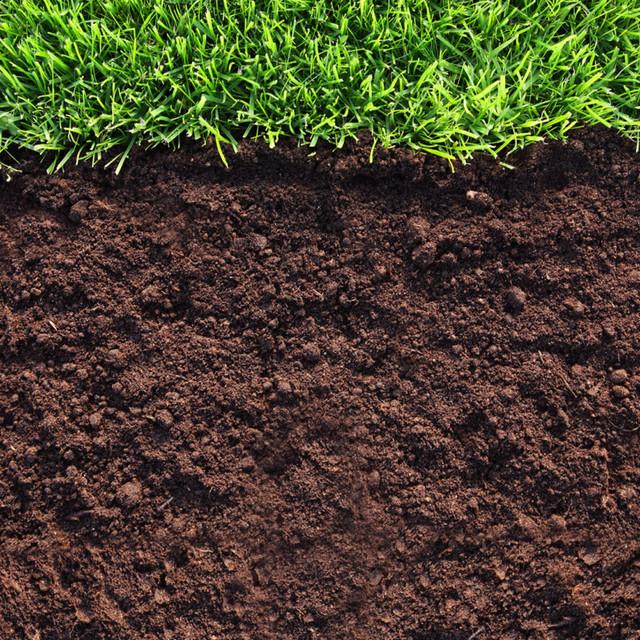 Для почвы