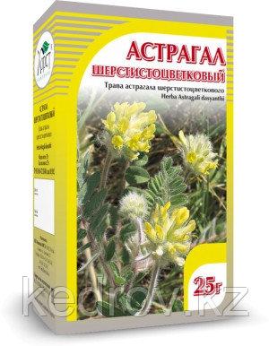 Астрагал шерстистоцветковый, трава 25 гр
