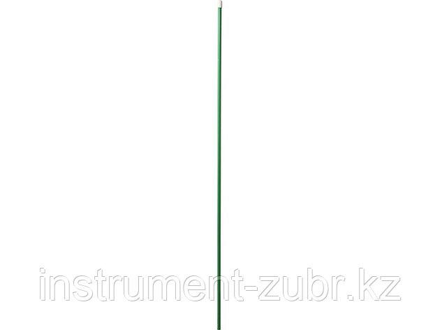 Опора для растений GRINDA, 1,0м х 10мм, фото 2