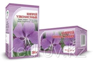 Кипрей узколистный (Иван-чай), трава № 20 х 2,0 гр.