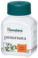 Пунарнава, Punarnava, Himalaya 60 капсул