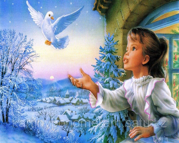 "Картина по номерам ""Белый голубь"""