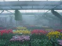 Системы туманообразования