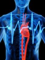 Для улучшения работы сердца