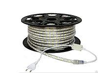 LED лента SMD 3528, 220 v в пвх оболочке L-004