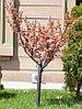 """LED дерево """"Цветущая яблоня"""" D-015"""