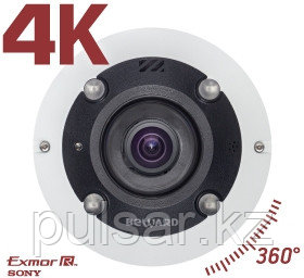 Панорамная IP камера BD3990FL2