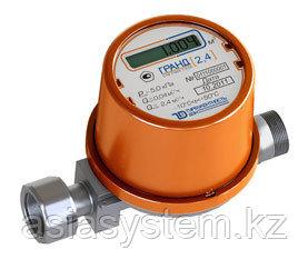 Счетчик газа бытовой электронный Грант 2.4 ТК