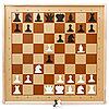 Демонстрационные шахматы магнитные.