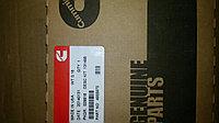 Комплект поршневых колец Cummins (Камминс) 4955975