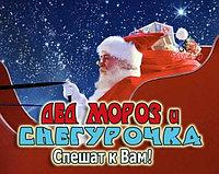 Дед Мороз и Снегурочка 20 минутное поздравление 30 и 31 декабря в Павлодаре