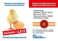 Инкубатор Промышленный на 2816 куриных яиц
