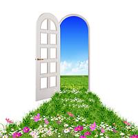 Двери металлопластиковые с декоративной раскладкой (пластиковые, ПВХ окна), фото 1