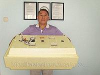 Старый модель. Инкубатор Золушка, 98 яиц, автопереворот, 220В/12В/гор вода. Аналоговый терморегулятор.