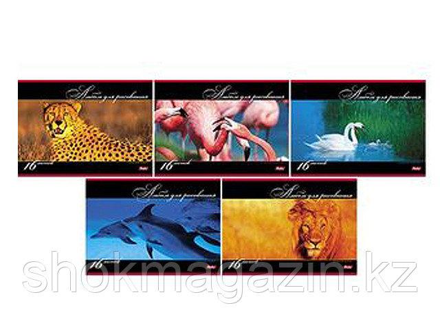 """Альбом для рисования """"В мире животных"""" 16 листов"""