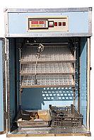 Инкубатор Фермер на 264 куриных яиц