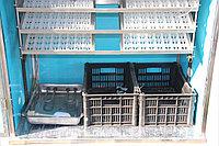 Инкубатор Фермер на 368 индюшиных яиц