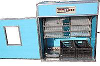 Инкубатор Фермер на 1326 перепелиных яиц