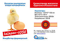 Инкубатор Фермер на 1056 куриных яиц