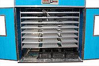 Инкубатор Промышленный на 882 индюшиных яиц