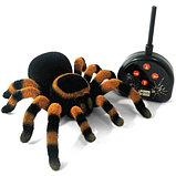 Тарантул паук на радиоуправлении, фото 3