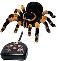 Тарантул паук на радиоуправлении