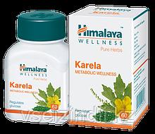 Карела Гималаи, сахарный диабет, поджелудочная железа