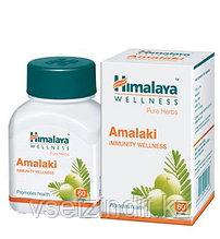 Амалаки, Гималаи ( Amalaki Himalaya)- омоложение, витамин С, 60 таблеток