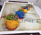Печать на холсте и фотобумаге: фотографии, картины, репродукции и др. Высококачетвенная печать на 9-ти красочном принтере.