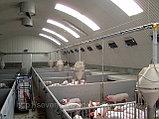 Строительство животноводческих и птицеводческих комплексов, ферм, объектов крестьянских и фермерских хозяйств, фото 2