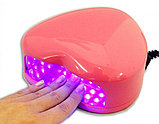 Лампа ультрафиолетовая для наращивания ногтей Mini LED Nail Lamp, фото 2