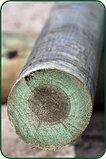 Опоры деревянные пропитанные. Новосибирск, фото 3