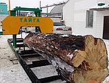 Пилорама ленточная Тайга Т3, фото 2