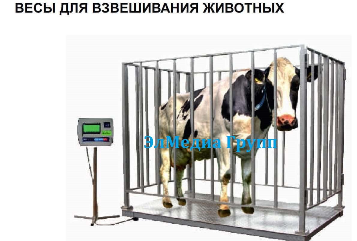 Весы для взвешивания животных электронные